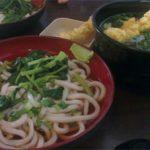 美味しくて安い讃岐うどんならタマンデサで sanuki udon@taman desa
