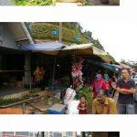 マレーシアの高原 涼しいキャメロンハイランド 子供も楽しめる 新鮮高原野菜といちごがうまい! おすすめヘリテージホテル in Heritage Hotel Cameron Highlands その2