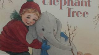The Elephant Tree  Panny Dale おすすめ英語の絵本 象の木 幼児向け