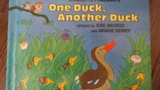 おすすめ英語の絵本 One Duck, Another Duck    Charlotte Pomerantz    幼児向け for toddlers