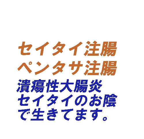 潰瘍性大腸炎 セイタイ注腸