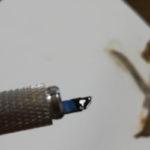 セルフアートメイク 自分で眉のマイクロブレーディング!? 気軽にアートメーク!