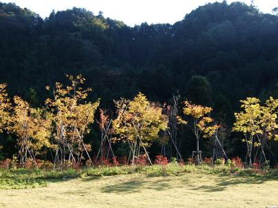 奥多摩 秋川渓谷 瀬音の湯